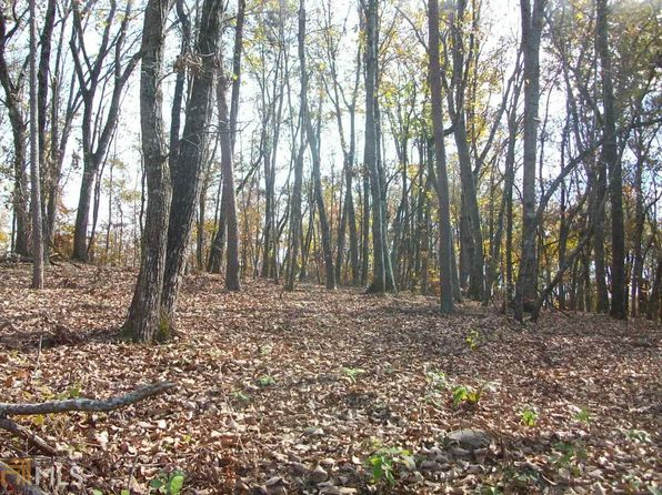 null bed null bath Vacant Land at 1251 Old Dahlonega Hwy Dahlonega, GA, 30533 is for sale at 23k - 1 of 3
