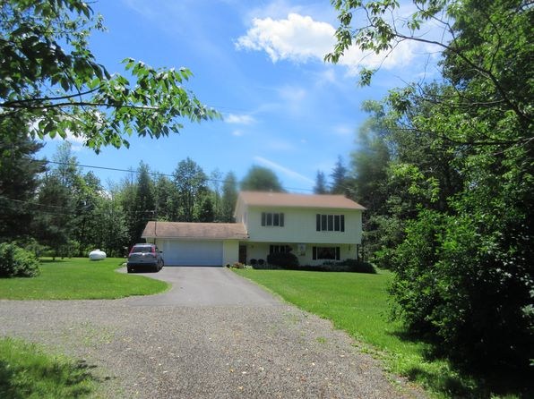 4 bed 2 bath Single Family at 335 LANGDON HILL RD ERIN, NY, 14838 is for sale at 188k - 1 of 15