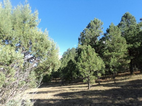 null bed null bath Vacant Land at  Little Creek Rd Alto, NM, 88312 is for sale at 59k - 1 of 5