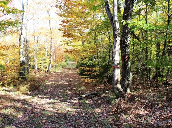 null bed null bath Vacant Land at 00 Woodlot Rd West Turin, NY, 13325 is for sale at 95k - 1 of 13