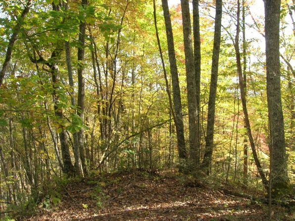 null bed null bath Vacant Land at  Thomas Divide Way Bryson City, NC, 28713 is for sale at 130k - 1 of 9