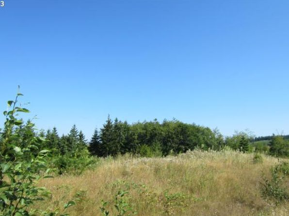 null bed null bath Vacant Land at 24 Silver Rdg Castle Rock, WA, 98611 is for sale at 65k - 1 of 4