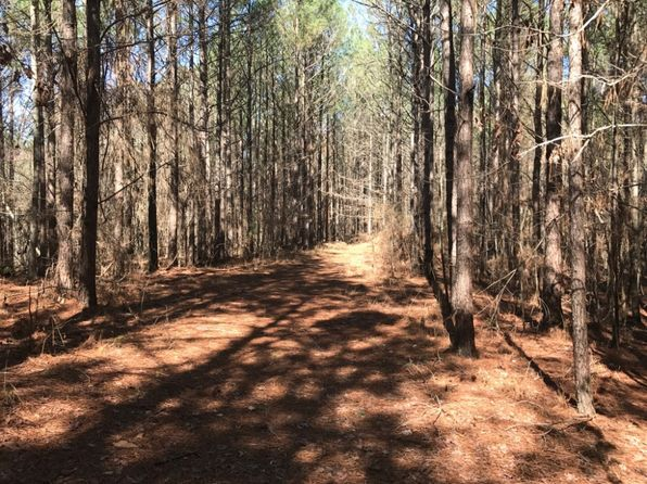 null bed null bath Vacant Land at  Chapel Hill Rd Chester, MS, 39735 is for sale at 320k - 1 of 14