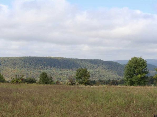 null bed null bath Vacant Land at 0 Simons Rd Westerlo, NY, 12009 is for sale at 89k - 1 of 13