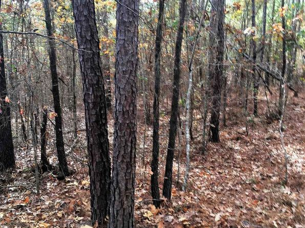 null bed null bath Vacant Land at 0 Turner Ln Dry Branch, GA, 31020 is for sale at 73k - 1 of 17