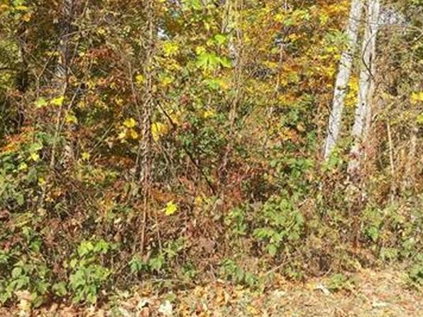 null bed null bath Vacant Land at 102 Luther Cove Rd Candler, NC, 28715 is for sale at 30k - 1 of 5