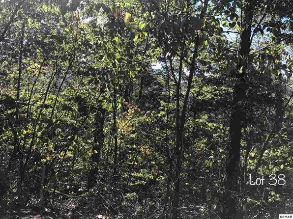 null bed null bath Vacant Land at  SCHISANDRA LN COSBY, TN, 37722 is for sale at 36k - google static map