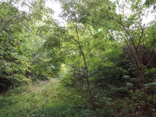 null bed null bath Vacant Land at  PINE HOLLOW RD JACKSBORO, TN, 37757 is for sale at 90k - 1 of 5