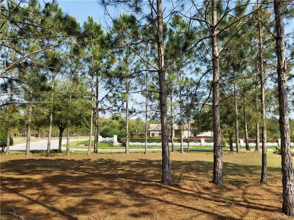 null bed null bath Vacant Land at 2865 N Brentwood Cir Lecanto, FL, 34461 is for sale at 35k - 1 of 13