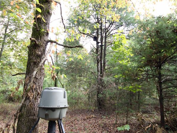 null bed null bath Vacant Land at  Bobcat Pt Chester, AR, 72946 is for sale at 84k - 1 of 29
