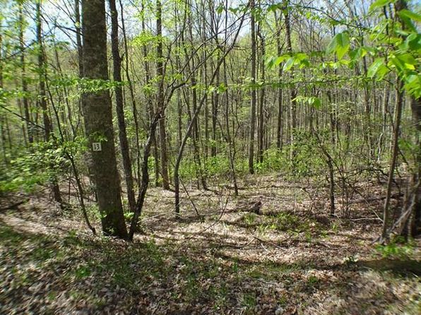 null bed null bath Vacant Land at 00 Deweese Rd Topton, NC, 28901 is for sale at 40k - 1 of 11