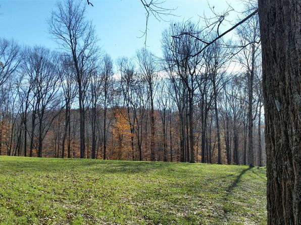 null bed null bath Vacant Land at 1 Barnhill Rd Primm Springs, TN, 38476 is for sale at 145k - 1 of 8