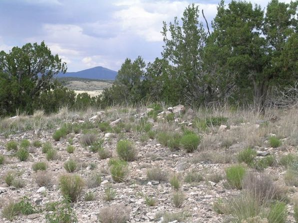 null bed null bath Vacant Land at 121 Campfire Trl Ancho, NM, 88301 is for sale at 19k - 1 of 18