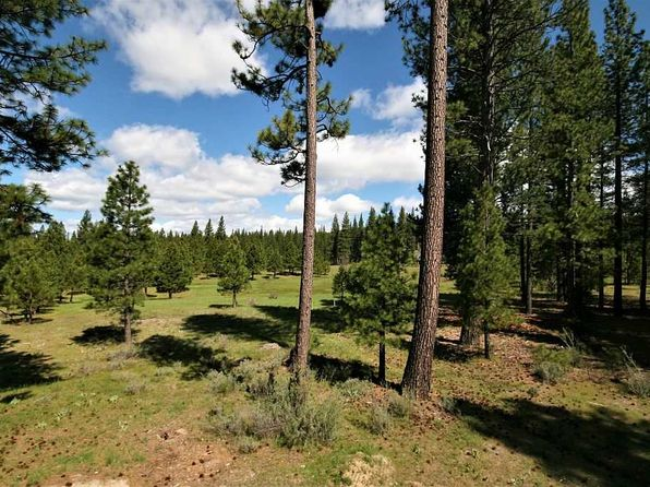 null bed null bath Vacant Land at 1476 HIGHWAY 89 CLIO, CA, 96106 is for sale at 250k - 1 of 20