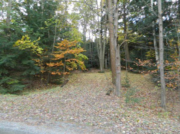 null bed null bath Vacant Land at 8997 W Chippewa Trl Shelby, MI, 49455 is for sale at 50k - 1 of 4