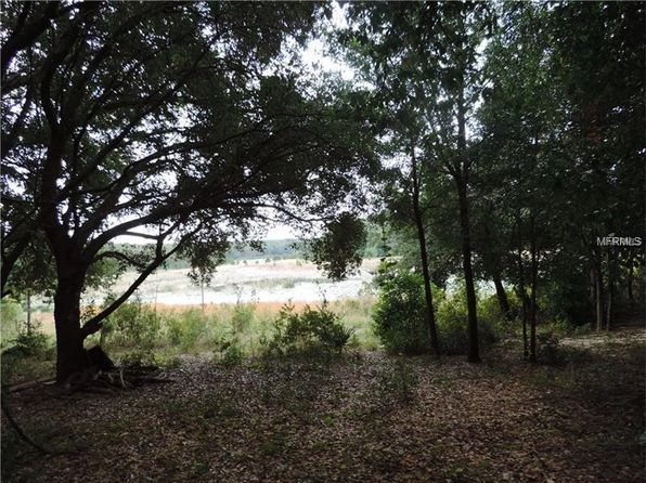 null bed null bath Vacant Land at  SE 175th Pl Umatilla, FL, 32784 is for sale at 23k - 1 of 10