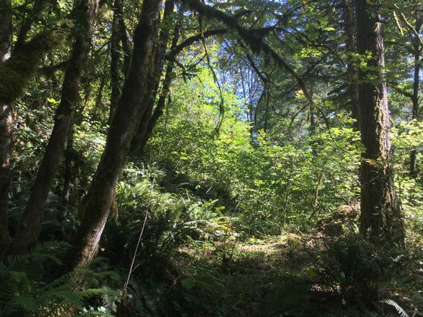 null bed null bath Vacant Land at 0 McKenzie Hwy Vida, OR, 97488 is for sale at 10k - google static map
