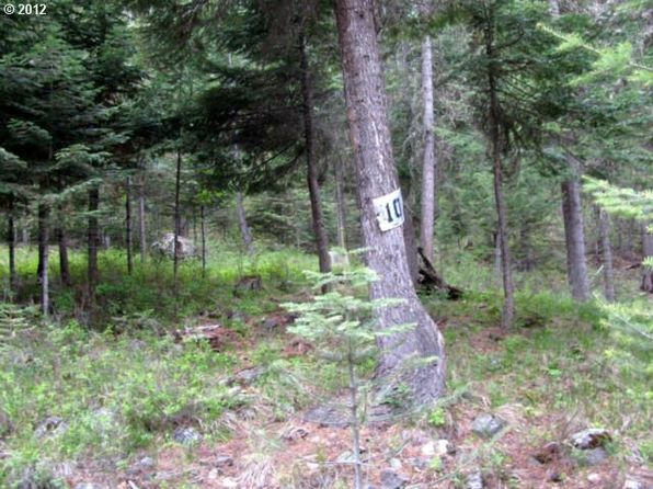null bed null bath Vacant Land at  Tamarack Lane 10 Lostine or, OR, 97857 is for sale at 70k - 1 of 3
