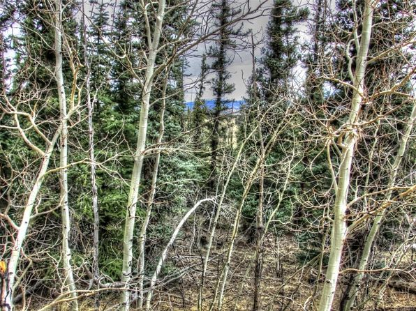 null bed null bath Vacant Land at 531 Nez Perce Rd Como, CO, 80432 is for sale at 60k - 1 of 8