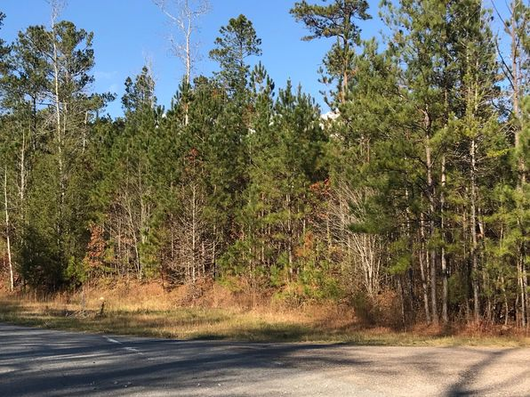 null bed null bath Vacant Land at  County Road 59 & Roanoke, AL, 36274 is for sale at 77k - google static map