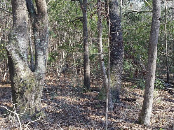 null bed null bath Vacant Land at 0 Back-A-Wood Rd Wadmalaw Island, SC, 29487 is for sale at 20k - 1 of 8