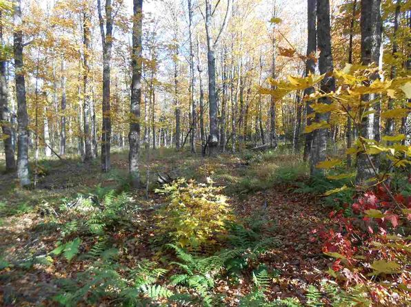 null bed null bath Vacant Land at 1682 County Line Lake Rd Paulding, MI, 49912 is for sale at 34k - 1 of 19