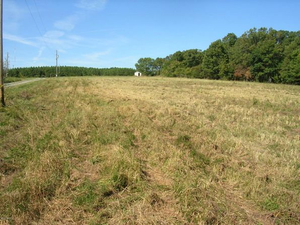 null bed null bath Vacant Land at 215 Paddock Ln Goreville, IL, 62939 is for sale at 39k - 1 of 9