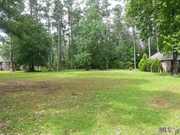 null bed null bath Vacant Land at 31465 River Pines Dr Springfield, LA, 70462 is for sale at 40k - 1 of 4