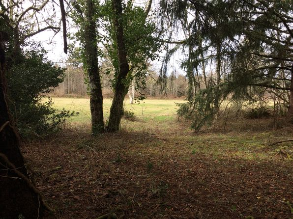 null bed null bath Vacant Land at  Cranberry Rd Long Beach, WA, 98631 is for sale at 185k - 1 of 19
