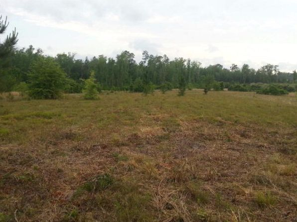 null bed null bath Vacant Land at 00 Pine Ave McHenry, MS, 39561 is for sale at 60k - 1 of 5