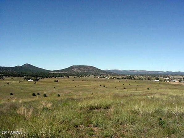null bed null bath Vacant Land at 46776 N 288 Hwy Young, AZ, 85554 is for sale at 735k - 1 of 15