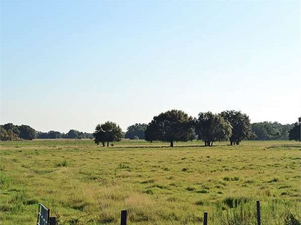 null bed null bath Vacant Land at  SW Grape Ave. Arcadia, FL, 34269 is for sale at 3.48m - 1 of 8