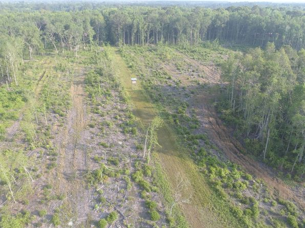null bed null bath Vacant Land at 0 Green Swamp Rd Brunswick, GA, 31523 is for sale at 412k - 1 of 29