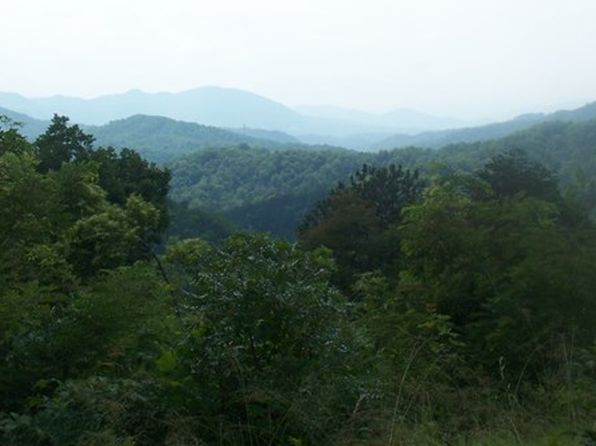 null bed null bath Vacant Land at  Lot 2 Sawmill Spgs Bryson City, NC, 28713 is for sale at 60k - 1 of 5