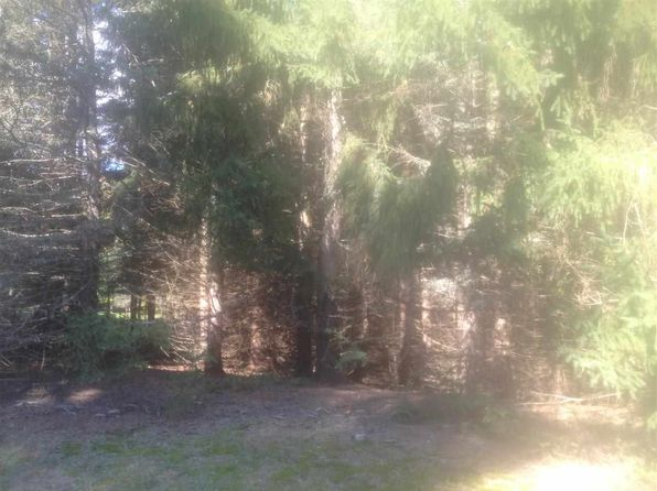 null bed null bath Vacant Land at  Lakewood Dr 17 Cadillac, MI, 49601 is for sale at 16k - 1 of 12
