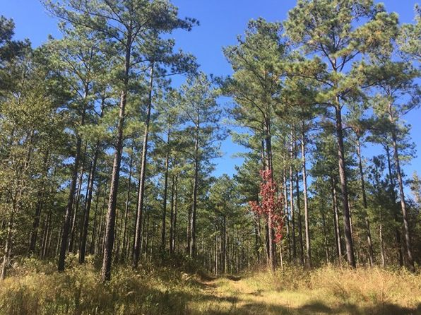 null bed null bath Vacant Land at 0000 Ga Hwy Meigs, GA, 31765 is for sale at 498k - 1 of 19