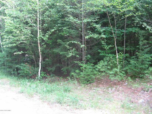 null bed null bath Vacant Land at 00 Pine Ln Schroon, NY, 12870 is for sale at 52k - 1 of 3