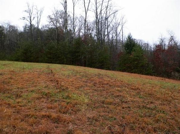 null bed null bath Vacant Land at  Trig Long Rd Dandridge, TN, 37725 is for sale at 35k - 1 of 4