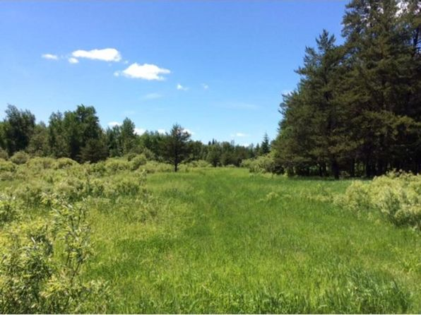 null bed null bath Vacant Land at 0000 County Road 25 Alango Twp, MN, 55703 is for sale at 108k - 1 of 10
