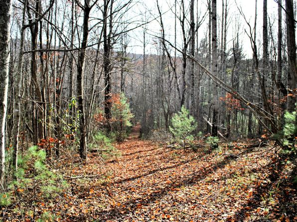 null bed null bath Vacant Land at TBD16.06AC Ridgeview Rd NW Floyd, VA, 24091 is for sale at 70k - 1 of 17