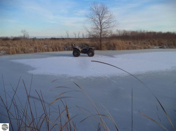 null bed null bath Vacant Land at 12.1 Wilson Creek Rd Hale, MI, 48739 is for sale at 19k - 1 of 9