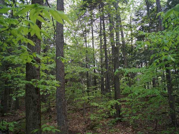 null bed null bath Vacant Land at 0 Of of Union Brook Rd Northfield, VT, 05663 is for sale at 134k - 1 of 8