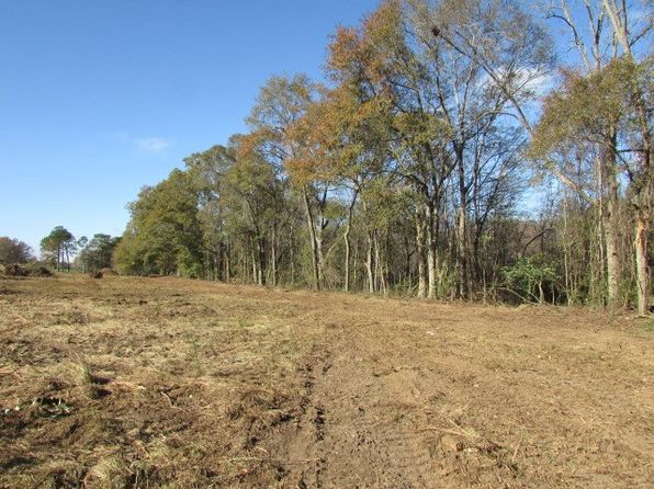 null bed null bath Vacant Land at 000 Hwy 33 N Moultrie, GA, 31768 is for sale at 40k - google static map