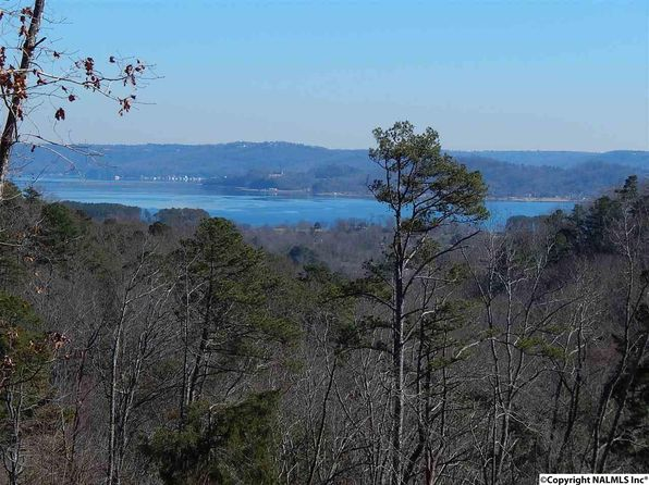 null bed null bath Vacant Land at  RUSH CIR GUNTERSVILLE, AL, 35976 is for sale at 80k - 1 of 7