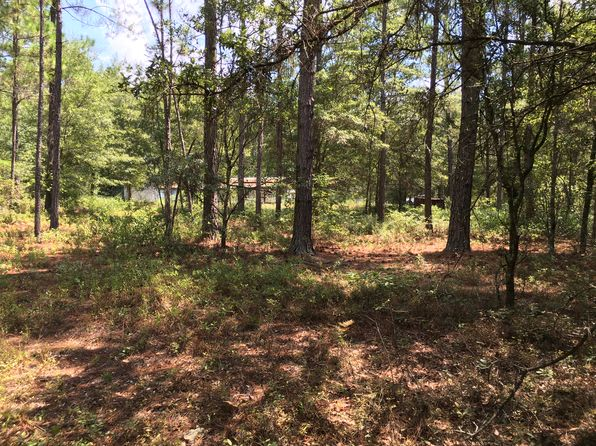 null bed null bath Vacant Land at 439 Levy A Ray Rd NE Ludowici, GA, 31316 is for sale at 40k - 1 of 7