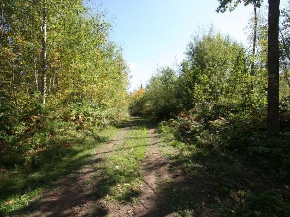 null bed null bath Vacant Land at 40A Pergande Rd Rhinelander, WI, 54501 is for sale at 70k - 1 of 5