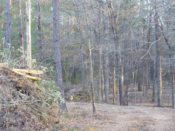 null bed null bath Vacant Land at  Lot 2 Long Pne Chapin, SC, 29036 is for sale at 59k - google static map