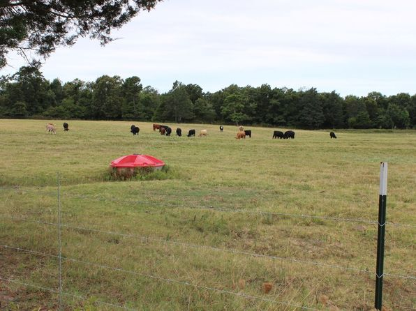null bed null bath Vacant Land at  County Line Rd Concord, AR, 72523 is for sale at 167k - 1 of 54