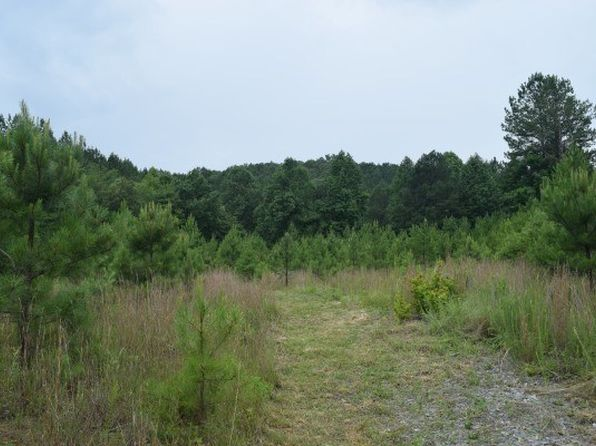 null bed null bath Vacant Land at LT 22 Crested Dr Murphy, NC, 28906 is for sale at 39k - 1 of 6
