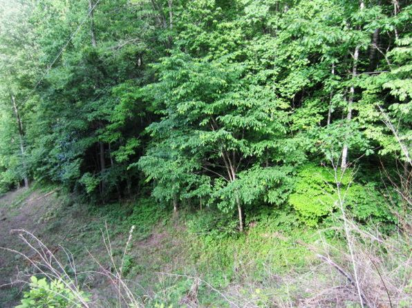 null bed null bath Vacant Land at  Tract 1 Hemlock Ln Whittier, NC, 28789 is for sale at 27k - google static map